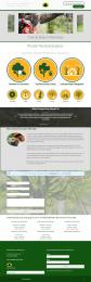 tree service websites